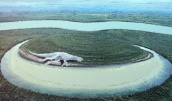 Illustration of an Oxbow With Skeletal Remains of Dinosaur